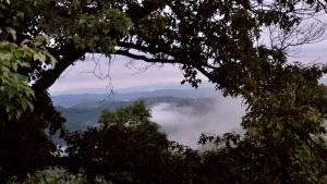 Bird's eye view of WV mountains