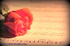 2 rose-and-music_19-142071