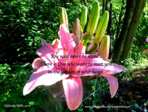 IMG_1269.jpg.pink lily neveralone